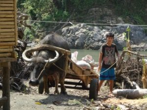Ureinwohner der Philippinen