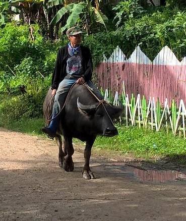 Lebensbedingungen auf Mindanao
